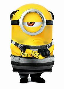 Minions 3 Streaming : best 25 minions film stream ideas on pinterest animated movies 2013 disney full movies and ~ Medecine-chirurgie-esthetiques.com Avis de Voitures