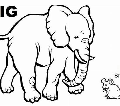 Coloring Opposites Pages Colouring Getcolorings Printable Getdrawings