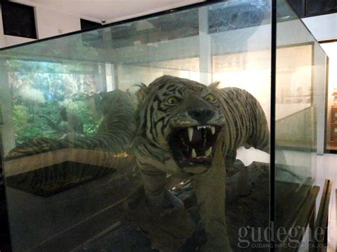 museum kebun binatang gembira loka yogya gudegnet