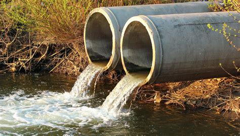 effects  sewage  aquatic ecosystems sciencing