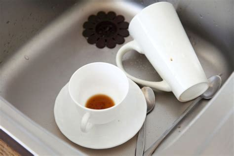 Septic systems are not intended to dispose of food waste, coffee grounds, grease, or fat, and, in fact, they will harm the septic tank. 15 Things You Should Never Put Down the Drain
