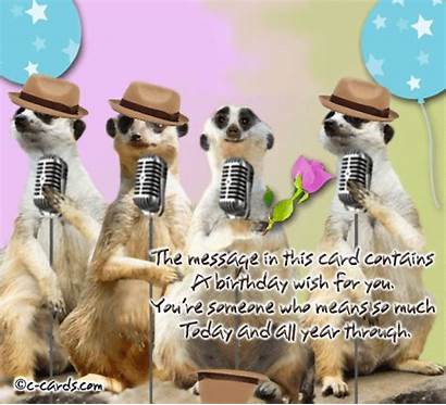 Birthday Funny Happy Wishes Singing Ecards Song
