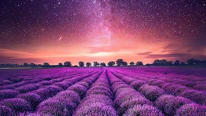 Lavender Sky Field Starry Background Twilight Desktop