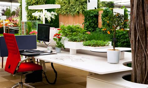 hire office hire office for green and clean work environment live