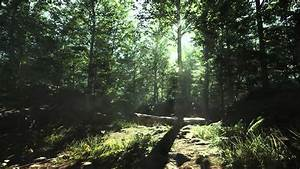 Unreal Engine 4  Forest Day Tech Demo