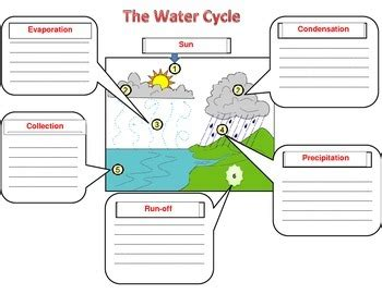 The Water Cycle Diagram Pdf by Water Cycle Diagram For Notes By Mrs Lynchs Learning Spot