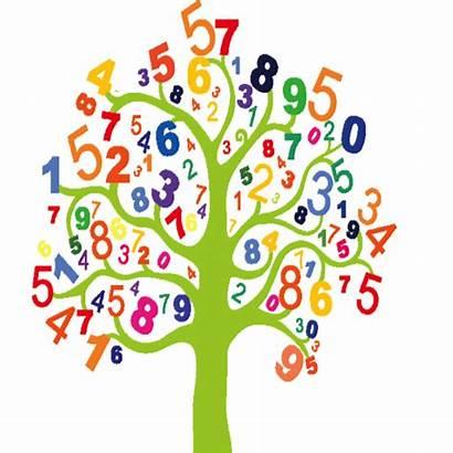 Clipart Clip Tree Test Math Mathematics Flower