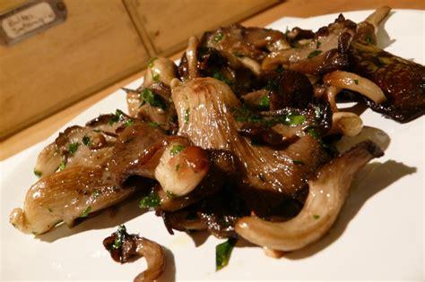 comment cuisiner des pleurotes comment cuisiner les pleurotes le pleurote cuisine