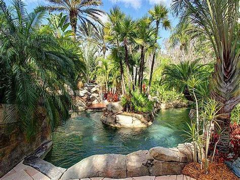 tropical landscapeyard  european fan palm tree pond