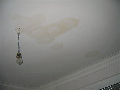 infiltration eau plafond appartement logement fuite eau jpg dossier familial