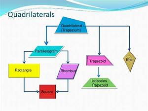 Quadrilaterals (definition and classification)