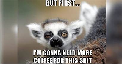 Coffee Memes Before Did Totally