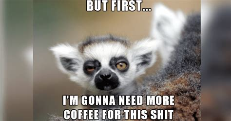 You may also like to read: 15 Parenting Before Coffee Memes That You Will Totally ...