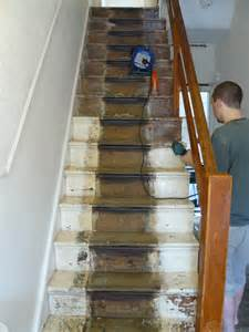 Carpet Treads For Wood Stairs by Project Staircase Housenumber59