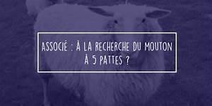 Le Mouton A 5 Pattes : trouver un associ mouton 5 pattes 1001 startups ~ Louise-bijoux.com Idées de Décoration