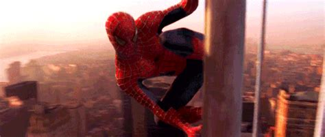 knew  sam raimis spider man