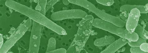 monitoring coliform environmental monitor