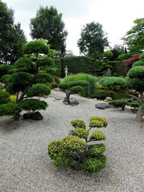 Japanischer Garten Bäume by Der Japanische Garten Nachgeharkt
