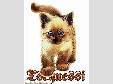 Tschüss Spruch Bild Facebook BilderGB BilderWhatsapp
