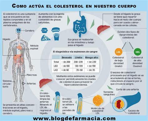infografias enfermedades cardiovasculares farmacia plaza