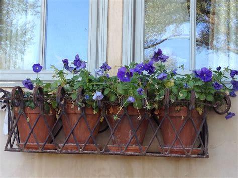 wrought iron window box planter backyard stuff