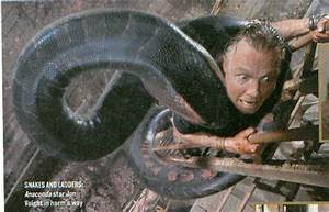 Jon in Anaconda - Jon Voight Photo (8362408) - Fanpop