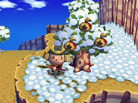 How To Do Cool Things On Animal Crossing City Folk Wii 4