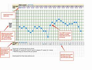Before You Buy A Basal Body Temperature Thermometer