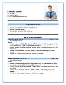best resume format for freshers engineers free download doc to pdf resume format sles download free professional resume format word doc