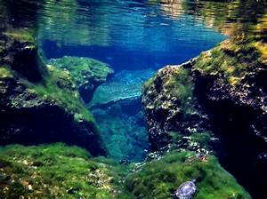 Panoramio - Photo of Cenote -Underwater rocks and caverns