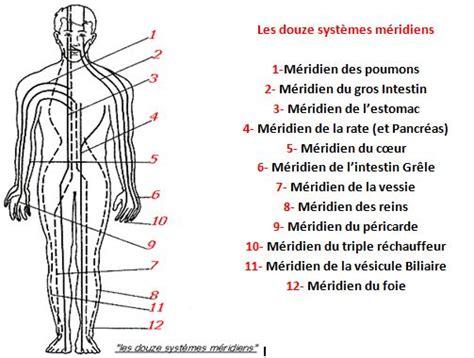 meridien du corps humain a la m 233 decine chinoise un fonctionnement bas 233 sur la philosophie