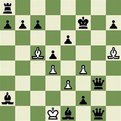 Chess Daily Puzzle Vs Progress Tactics Moves