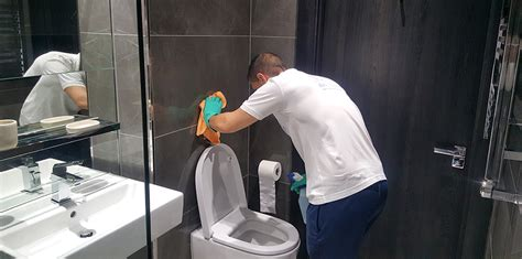 professional bathroom cleaning  plumbing service