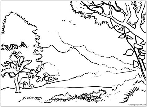 forest landscape coloring page  coloring pages