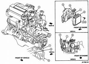 Diagram For 95 Ford Ranger Engine Smog  Diagram  Free