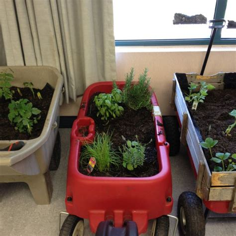 what a great way to bring gardening into the classroom 552 | fb8f8c71db761f9f0fd6170889fef465