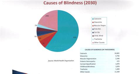 what causes color blindness what causes color blindness driverlayer search engine