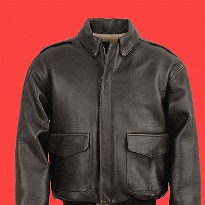 Jacket Bomber History Complex Ma Brief