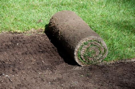 new lawn installation cost how much does a new lawn cost