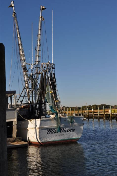 Shrimp Boat Jobs South Carolina by 300 Best Images About Shrimpin On Pinterest Fishing