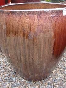 planter un magnolia en pot 28 images design plant and flower pots with light magnolia for