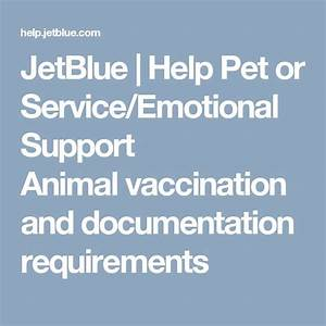 best 25 emotional support animal ideas on pinterest With documentation for emotional support dog