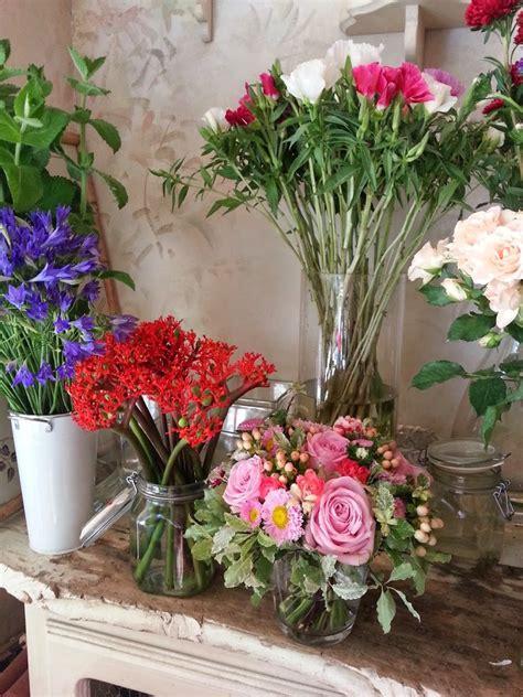 foglie e fiori genova foglie fiori e fantasia e i garofanini a forma di