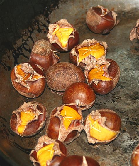 cooking chestnuts roasted chestnuts recipe dishmaps