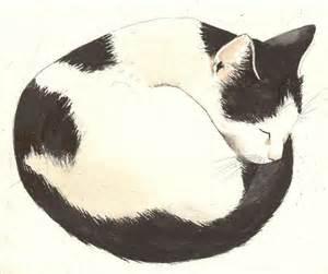 cat drawings pin by jocelyn bridge on inspiration animals birds