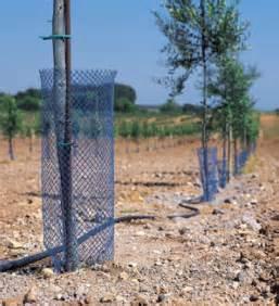 Protection Arbres Fruitiers : anticonejos aguamarket ~ Premium-room.com Idées de Décoration