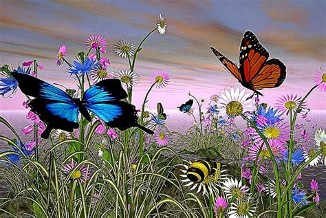 Free Animated Butterfly Wallpaper - animated butterflies free hd wallpapers