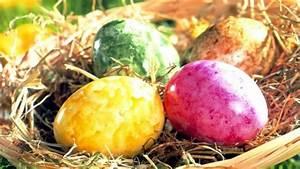 Eierfärben Mit Naturfarben : eier selber f rben mit naturfarben kinderpost berliner morgenpost ~ Yasmunasinghe.com Haus und Dekorationen