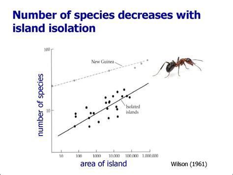 island biogeography regional scale diversity ppt