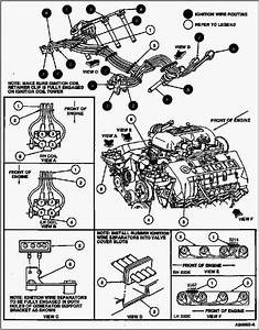 1997 Cobra Firing Order And Coil Packs